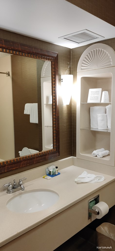 洗面、トイレ、バスルームの様子